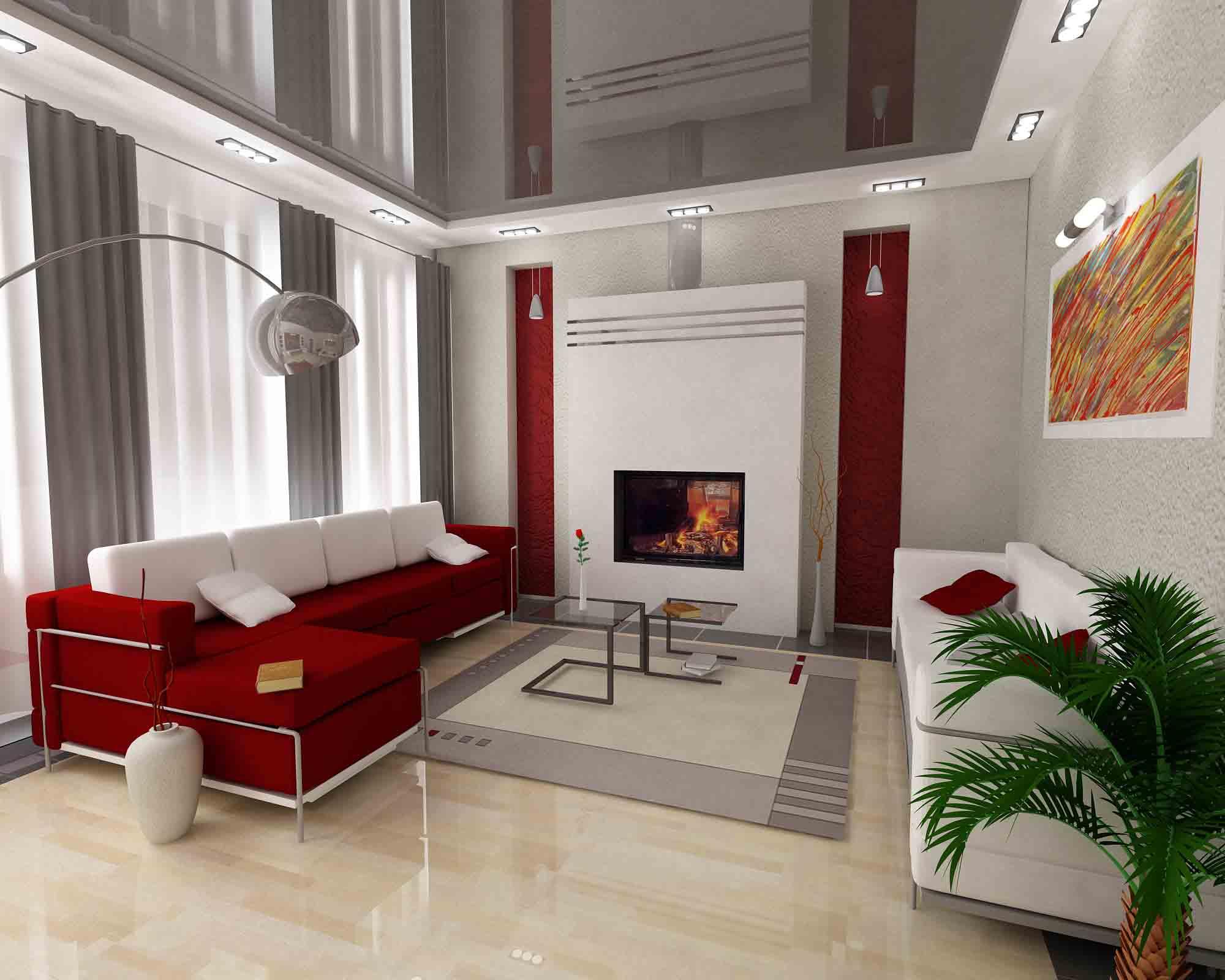 Дизайн большой комнаты в доме