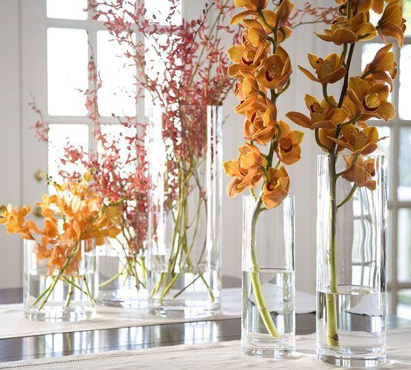 Флористика – соцветие изысканного вкуса: цветы в доме!